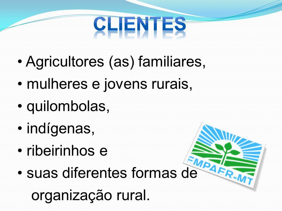 Agricultores (as) familiares, mulheres e jovens rurais, quilombolas, indígenas, ribeirinhos e suas diferentes formas de organização rural.