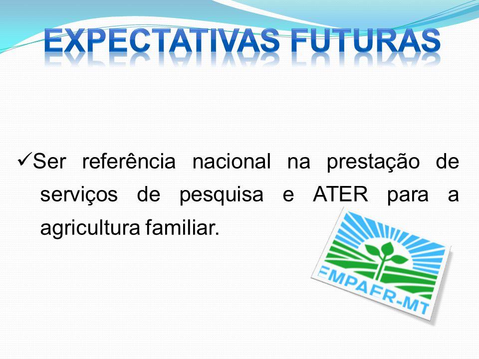 Ser referência nacional na prestação de serviços de pesquisa e ATER para a agricultura familiar.