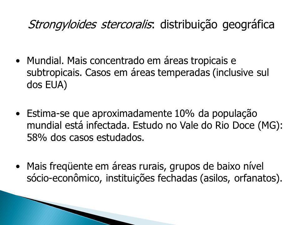 Strongyloides stercoralis: distribuição geográfica Mundial. Mais concentrado em áreas tropicais e subtropicais. Casos em áreas temperadas (inclusive s