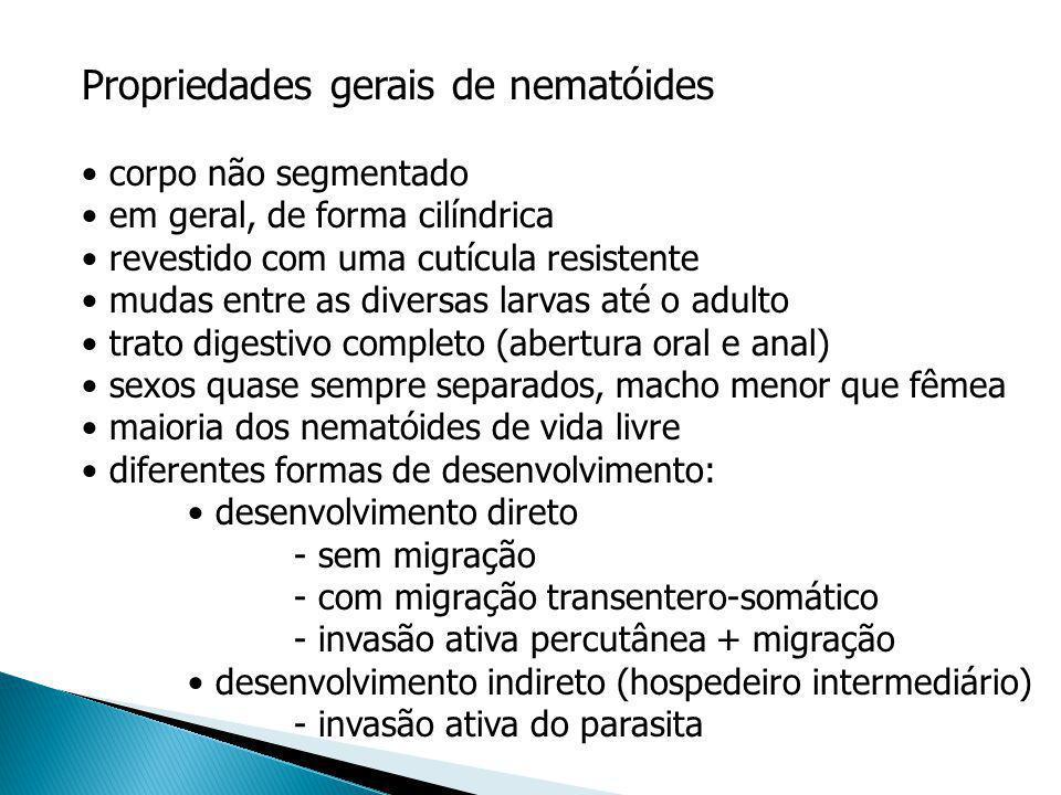Propriedades gerais de nematóides corpo não segmentado em geral, de forma cilíndrica revestido com uma cutícula resistente mudas entre as diversas lar