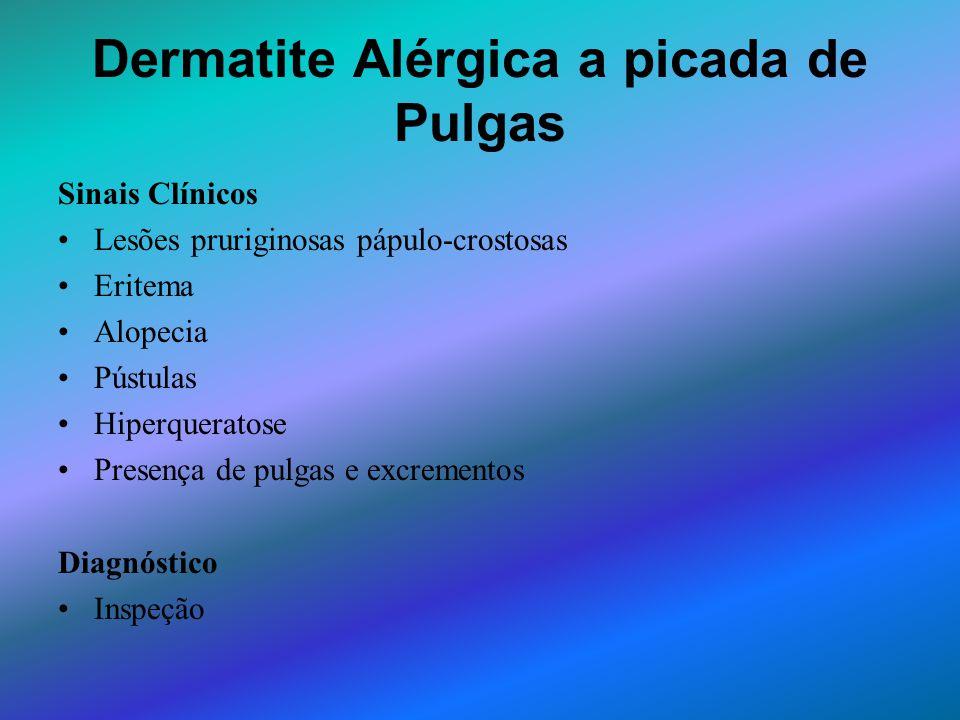 Dermatite Alérgica a picada de Pulgas Sinais Clínicos Lesões pruriginosas pápulo-crostosas Eritema Alopecia Pústulas Hiperqueratose Presença de pulgas