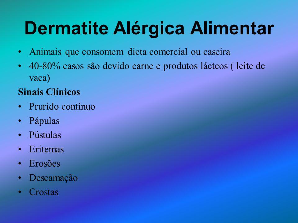 Dermatite Alérgica Alimentar Animais que consomem dieta comercial ou caseira 40-80% casos são devido carne e produtos lácteos ( leite de vaca) Sinais