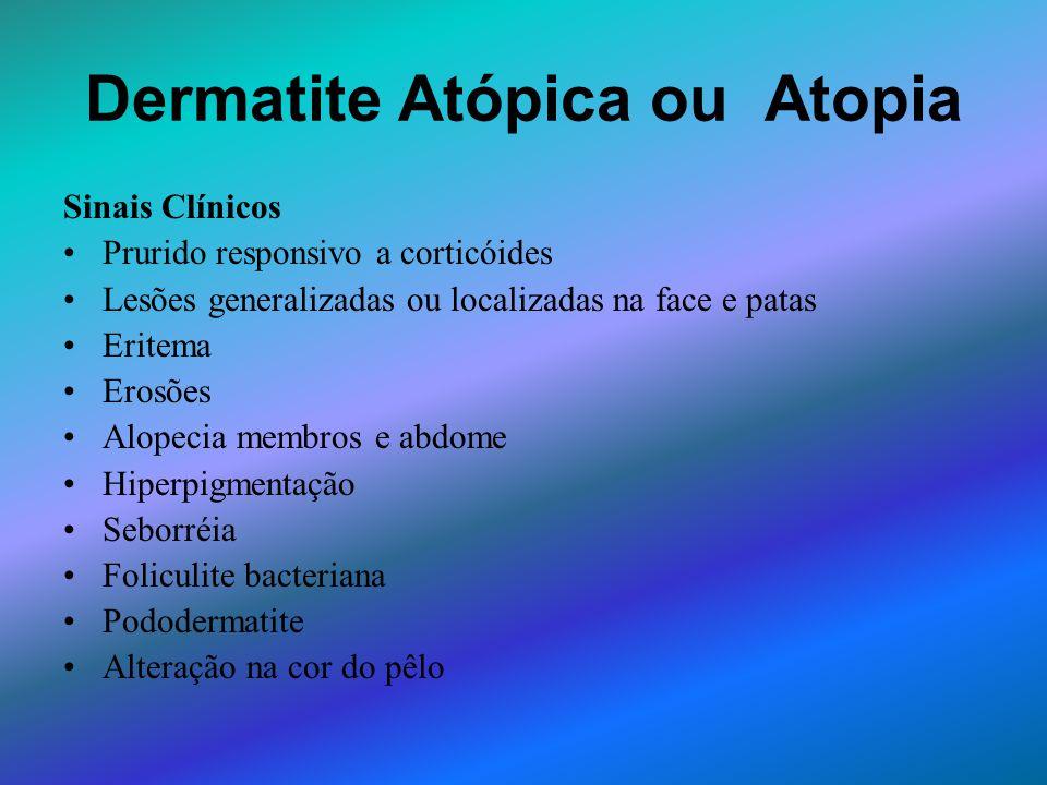 Dermatite Atópica ou Atopia Sinais Clínicos Prurido responsivo a corticóides Lesões generalizadas ou localizadas na face e patas Eritema Erosões Alope