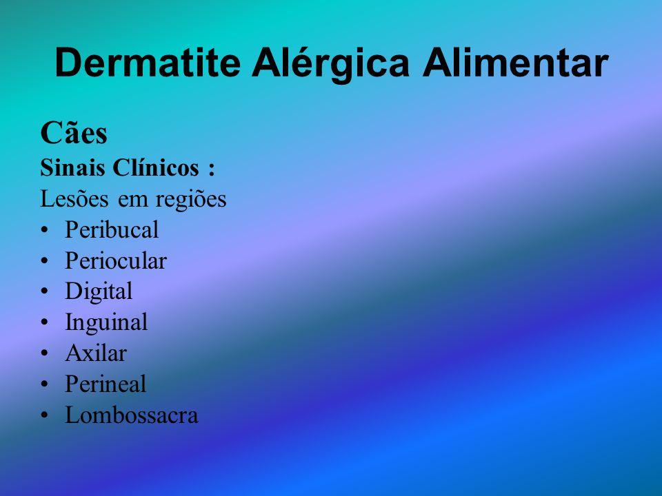 Dermatite Alérgica Alimentar Cães Sinais Clínicos : Lesões em regiões Peribucal Periocular Digital Inguinal Axilar Perineal Lombossacra