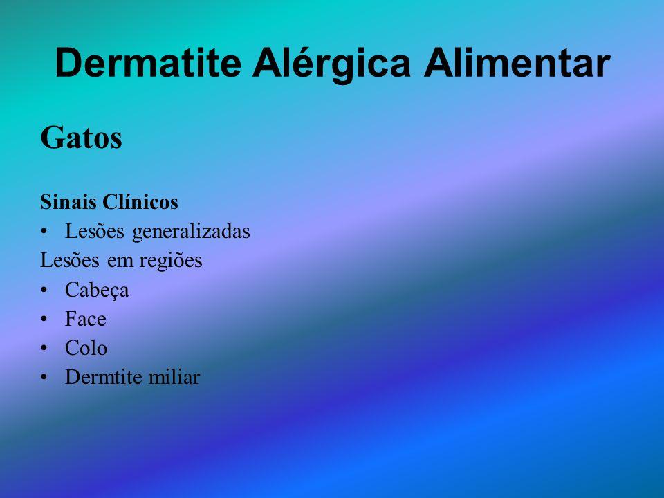 Dermatite Alérgica Alimentar Gatos Sinais Clínicos Lesões generalizadas Lesões em regiões Cabeça Face Colo Dermtite miliar