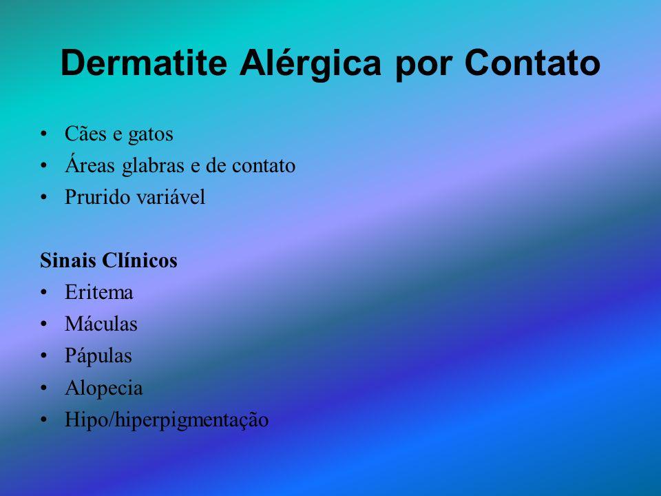 Dermatite Alérgica por Contato Cães e gatos Áreas glabras e de contato Prurido variável Sinais Clínicos Eritema Máculas Pápulas Alopecia Hipo/hiperpig