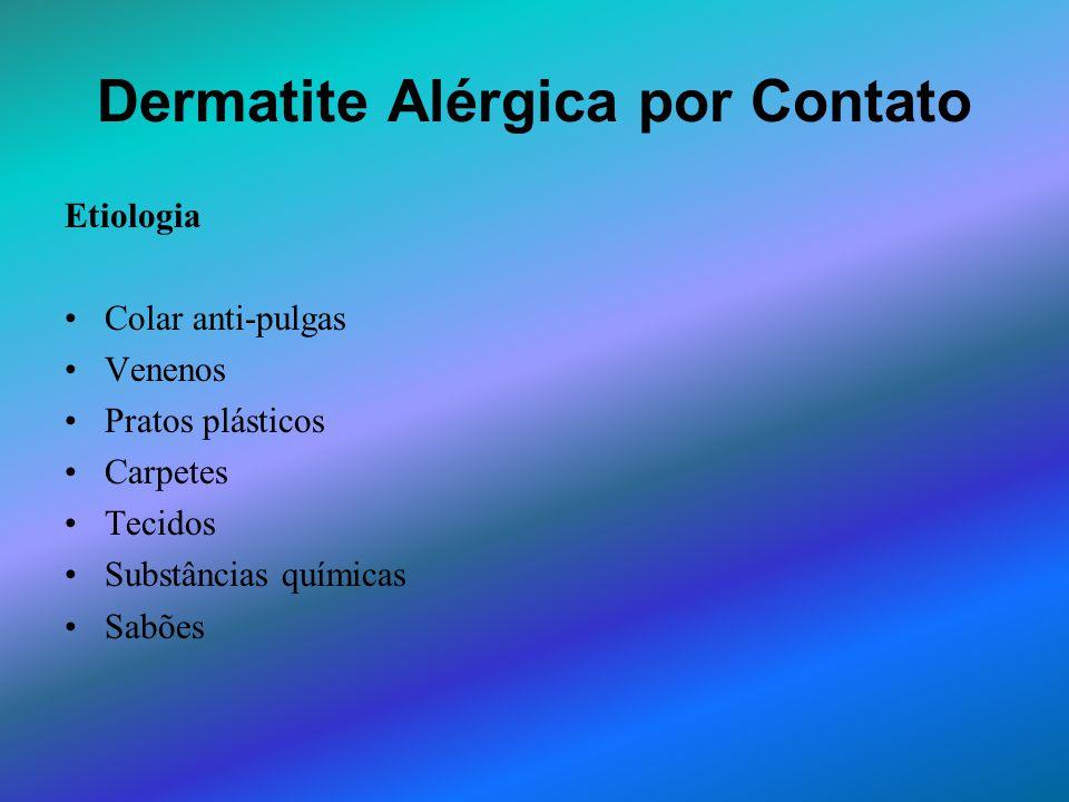 Dermatite Alérgica por Contato Etiologia Colar anti-pulgas Venenos Pratos plásticos Carpetes Tecidos Substâncias químicas Sabões