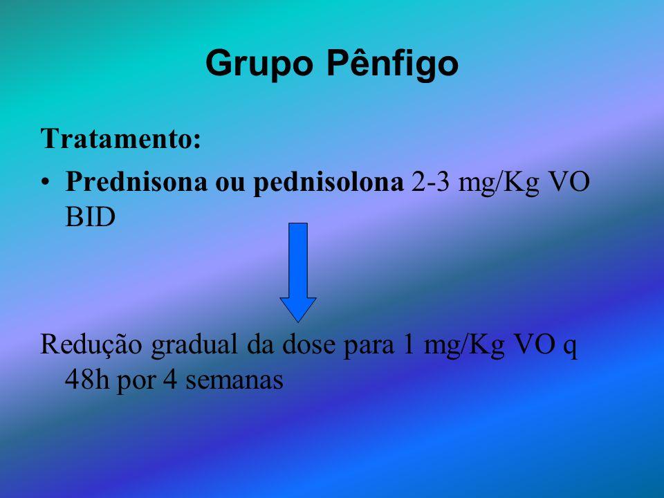 Tratamento: Prednisona ou pednisolona 2-3 mg/Kg VO BID Redução gradual da dose para 1 mg/Kg VO q 48h por 4 semanas