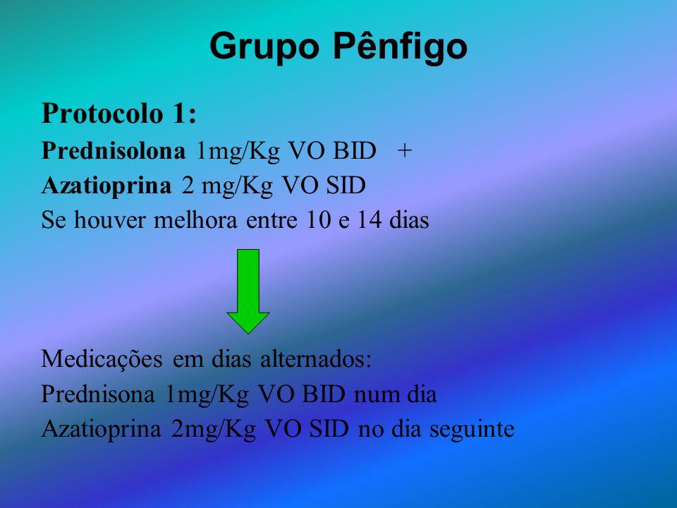 Grupo Pênfigo Protocolo 1: Prednisolona 1mg/Kg VO BID + Azatioprina 2 mg/Kg VO SID Se houver melhora entre 10 e 14 dias Medicações em dias alternados: