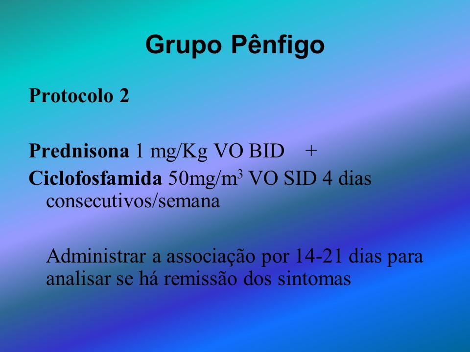 Grupo Pênfigo Protocolo 2 Prednisona 1 mg/Kg VO BID + Ciclofosfamida 50mg/m 3 VO SID 4 dias consecutivos/semana Administrar a associação por 14-21 dia