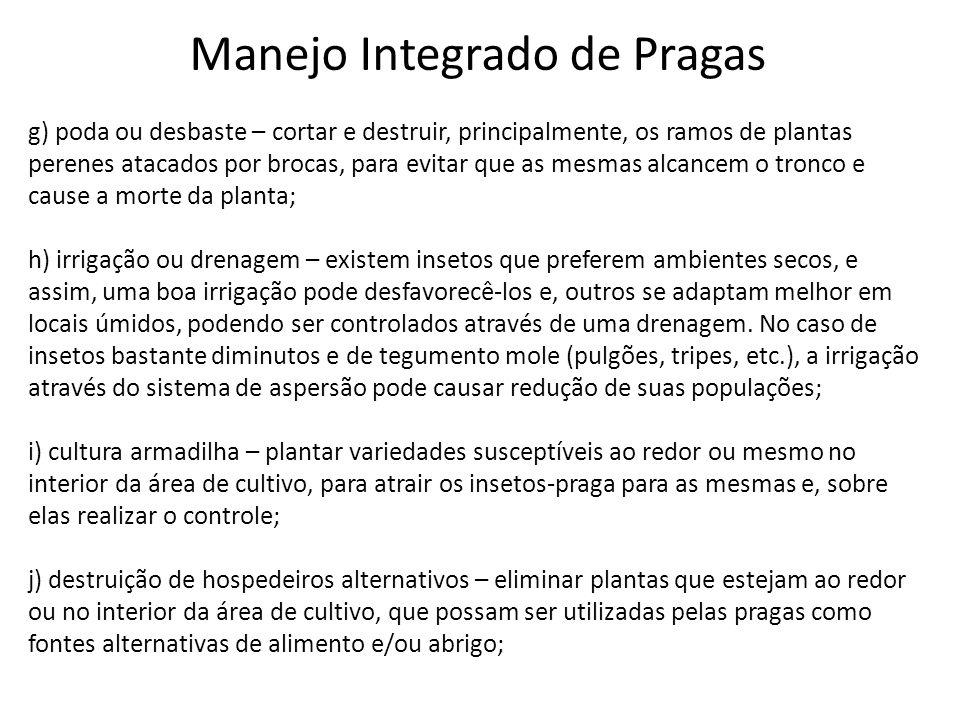 Manejo Integrado de Pragas g) poda ou desbaste – cortar e destruir, principalmente, os ramos de plantas perenes atacados por brocas, para evitar que a