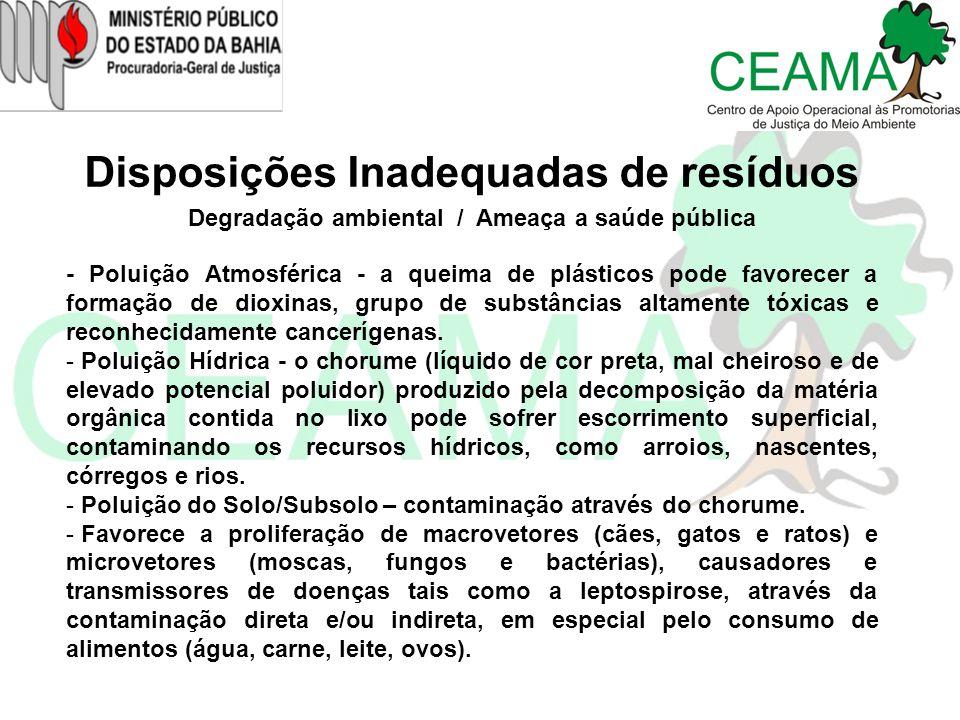 Disposições Inadequadas de resíduos Degradação ambiental / Ameaça a saúde pública - Poluição Atmosférica - a queima de plásticos pode favorecer a form