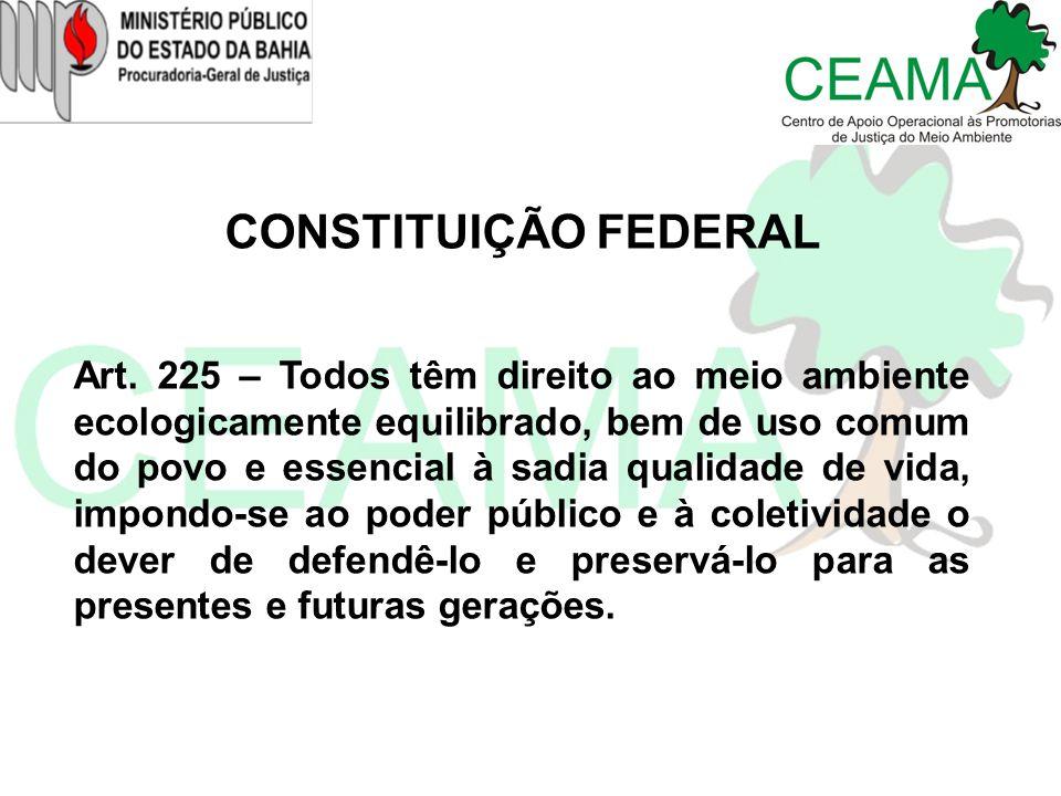 CONSTITUIÇÃO FEDERAL Art. 225 – Todos têm direito ao meio ambiente ecologicamente equilibrado, bem de uso comum do povo e essencial à sadia qualidade