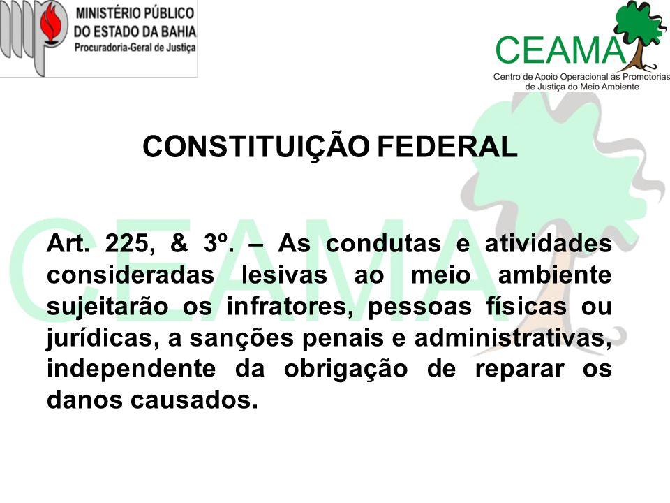 CONSTITUIÇÃO FEDERAL Art. 225, & 3º. – As condutas e atividades consideradas lesivas ao meio ambiente sujeitarão os infratores, pessoas físicas ou jur