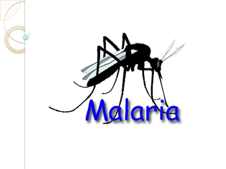 Malária Doença infecciosa potencialmente grave: Causada por protozoários do gênero Plasmodium Transmitidos pela picada do mosquito Anopheles.