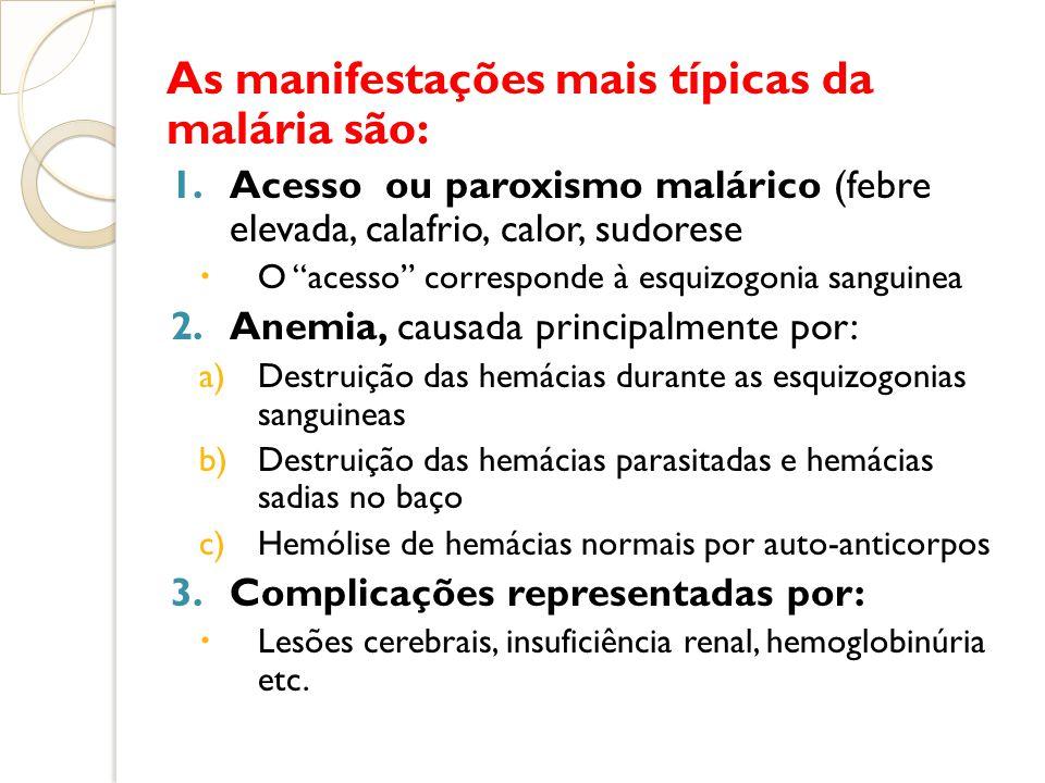 As manifestações mais típicas da malária são: 1.Acesso ou paroxismo malárico (febre elevada, calafrio, calor, sudorese O acesso corresponde à esquizog