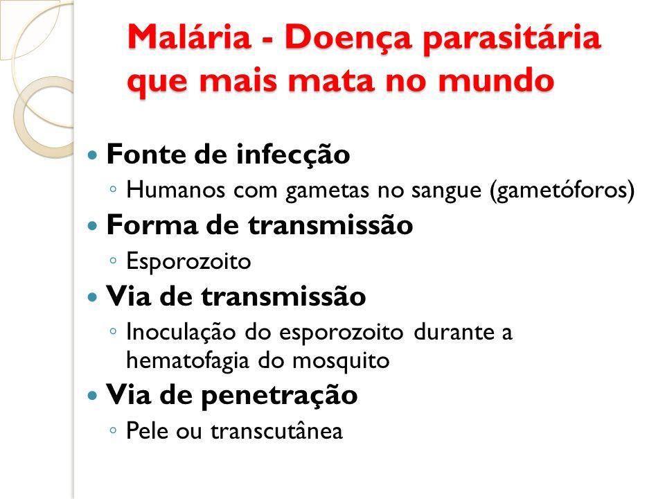 Malária - Doença parasitária que mais mata no mundo Malária - Doença parasitária que mais mata no mundo Fonte de infecção Humanos com gametas no sangu