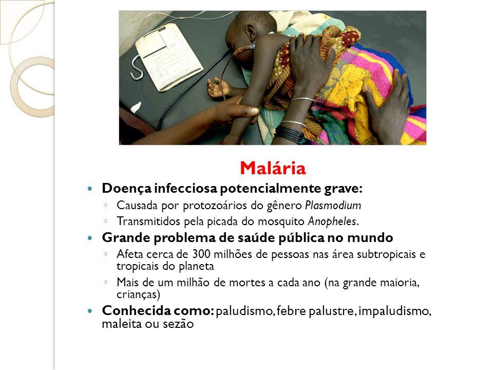 Malária Doença infecciosa potencialmente grave: Causada por protozoários do gênero Plasmodium Transmitidos pela picada do mosquito Anopheles. Grande p