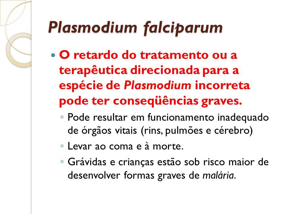 Plasmodium falciparum O retardo do tratamento ou a terapêutica direcionada para a espécie de Plasmodium incorreta pode ter conseqüências graves. Pode