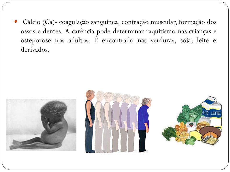 Cálcio (Ca)- coagulação sanguínea, contração muscular, formação dos ossos e dentes. A carência pode determinar raquitismo nas crianças e osteporose no