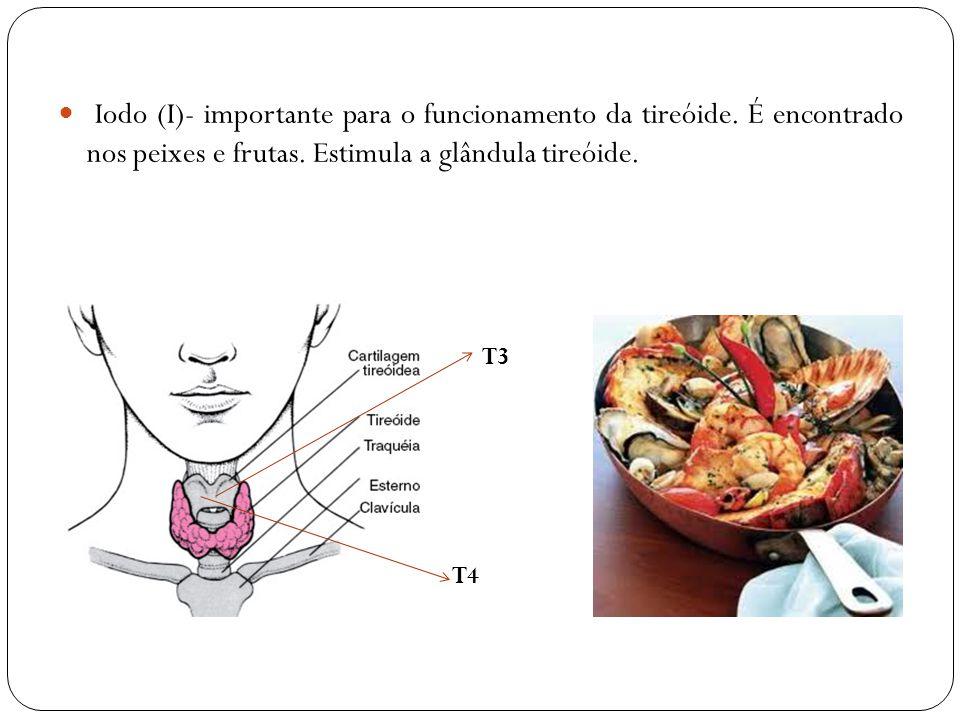 Iodo (I)- importante para o funcionamento da tireóide. É encontrado nos peixes e frutas. Estimula a glândula tireóide. T3 T4