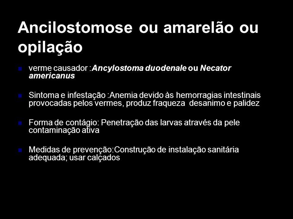 Ancilostomose ou amarelão ou opilação verme causador :Ancylostoma duodenale ou Necator americanus Sintoma e infestação :Anemia devido às hemorragias i