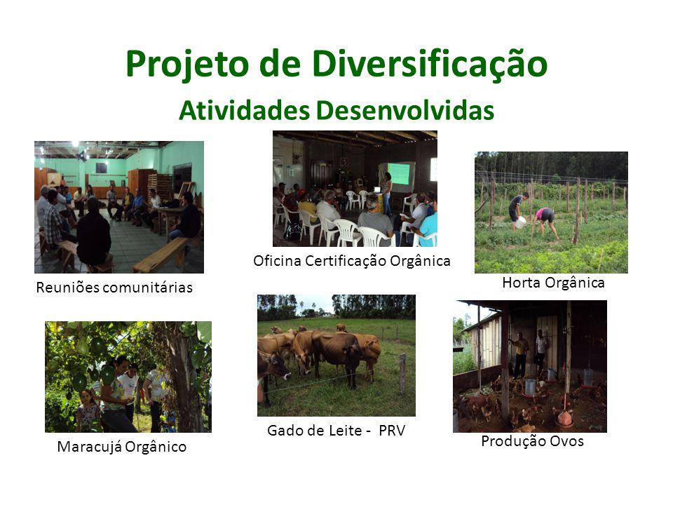 Projeto de Diversificação Atividades Desenvolvidas Reuniões comunitárias Oficina Certificação Orgânica Horta Orgânica Gado de Leite - PRV Produção Ovo