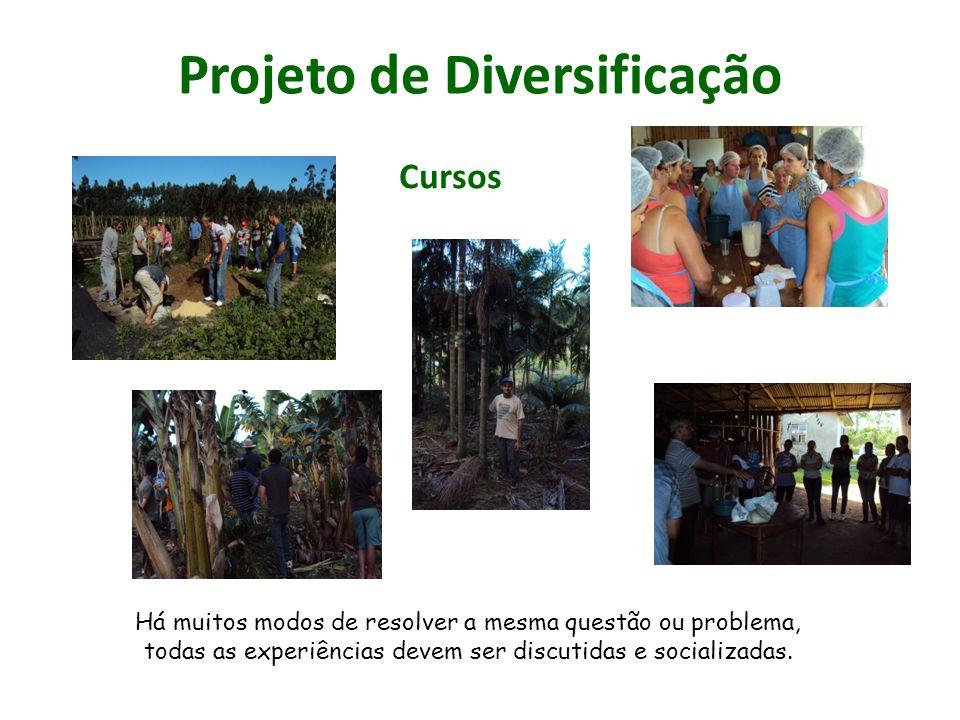 Projeto de Diversificação Há muitos modos de resolver a mesma questão ou problema, todas as experiências devem ser discutidas e socializadas. Cursos