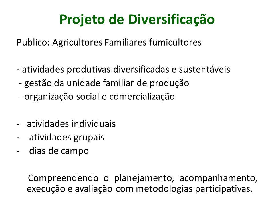 Projeto de Diversificação Publico: Agricultores Familiares fumicultores - atividades produtivas diversificadas e sustentáveis - gestão da unidade fami