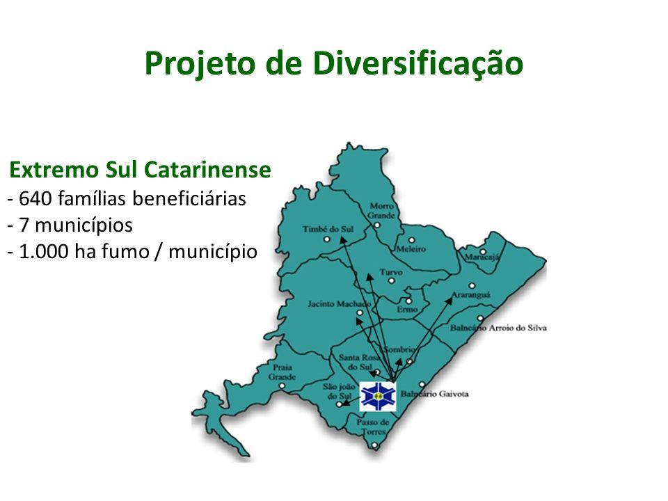 Projeto de Diversificação Planejamento Participativo - Palestras - Relatos de experiências de diversificação - Trabalhos em Grupos - FOFA