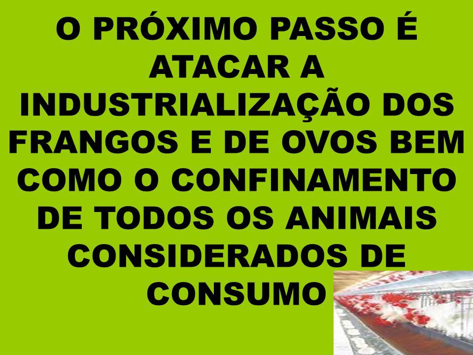 DE ALIMENTOS QUE ACONTECERÁ EM BREVE CASO NÃO SEJA APROVADO O PL.4548/98