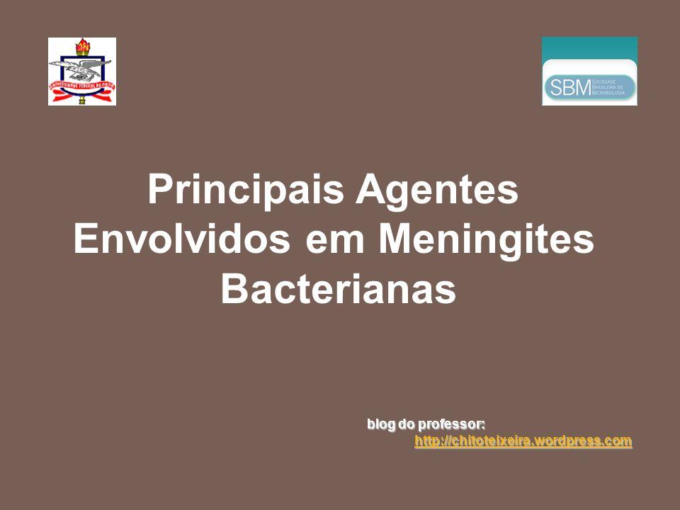 Principais Agentes Envolvidos em Meningites Bacterianas blog do professor: http://chitoteixeira.wordpress.com