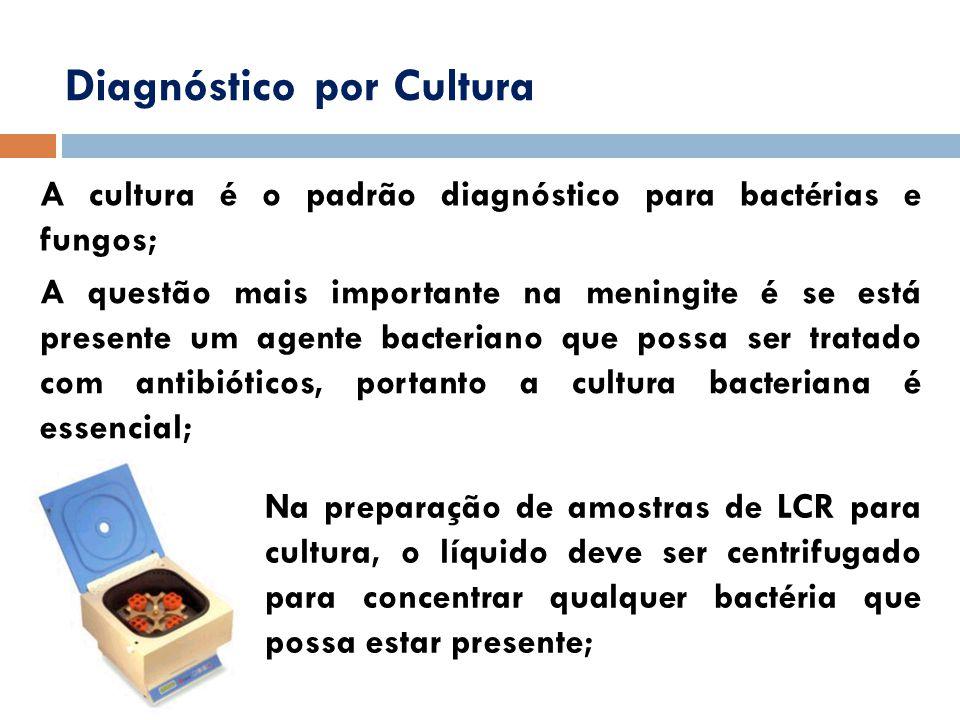 Diagnóstico por Cultura A cultura é o padrão diagnóstico para bactérias e fungos; A questão mais importante na meningite é se está presente um agente