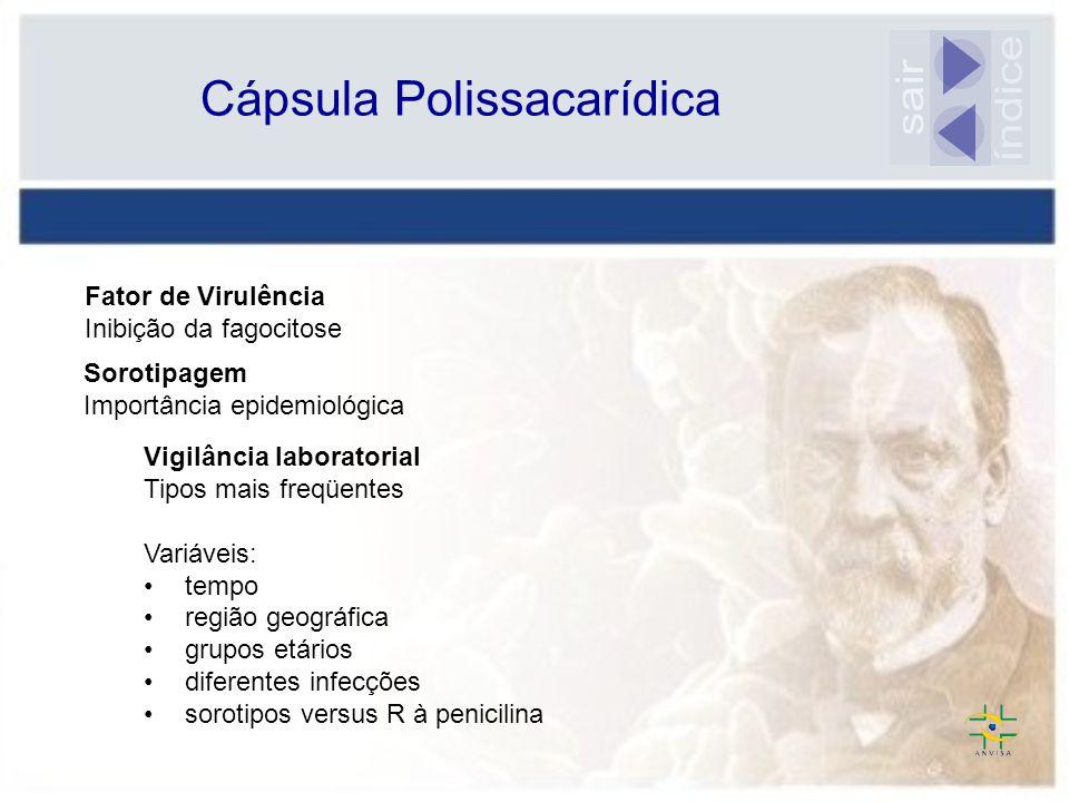 Cápsula Polissacarídica Vigilância laboratorial Tipos mais freqüentes Variáveis: tempo região geográfica grupos etários diferentes infecções sorotipos