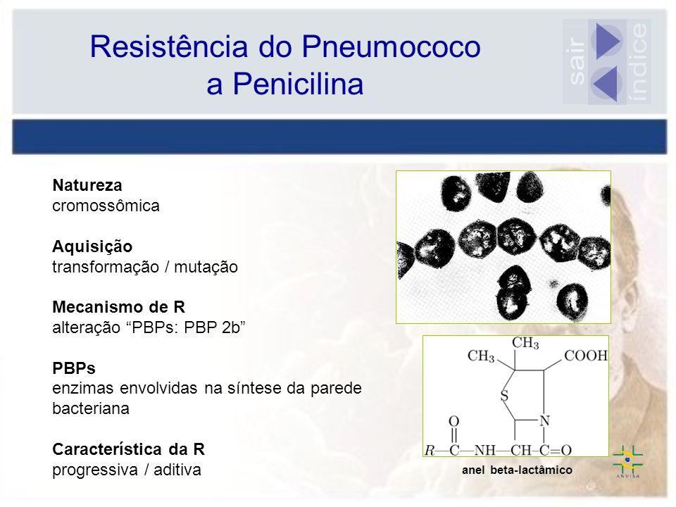 Resistência do Pneumococo a Penicilina Natureza cromossômica Aquisição transformação / mutação Mecanismo de R alteração PBPs: PBP 2b PBPs enzimas envolvidas na síntese da parede bacteriana Característica da R progressiva / aditiva anel beta-lactâmico