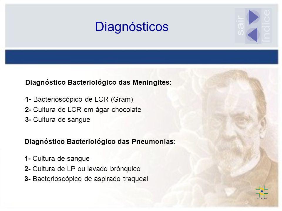 Diagnósticos 1- Bacterioscópico de LCR (Gram) 2- Cultura de LCR em ágar chocolate 3- Cultura de sangue Diagnóstico Bacteriológico das Meningites: Diag