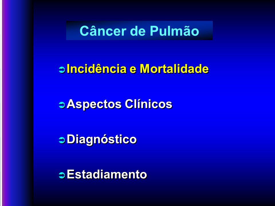 Ü Incidência e Mortalidade Ü Aspectos Clínicos Ü Diagnóstico Ü Estadiamento Ü Incidência e Mortalidade Ü Aspectos Clínicos Ü Diagnóstico Ü Estadiamento Câncer de Pulmão