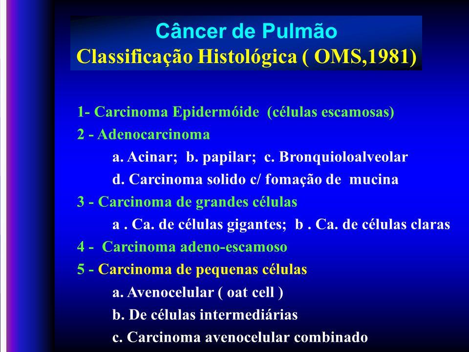 Estadiamento Câncer de pulmão Sistema ( TNM ) T – 1,2,3,4 N – 1,2,3 M – 0,1 T – 1,2,3,4 N – 1,2,3 M – 0,1