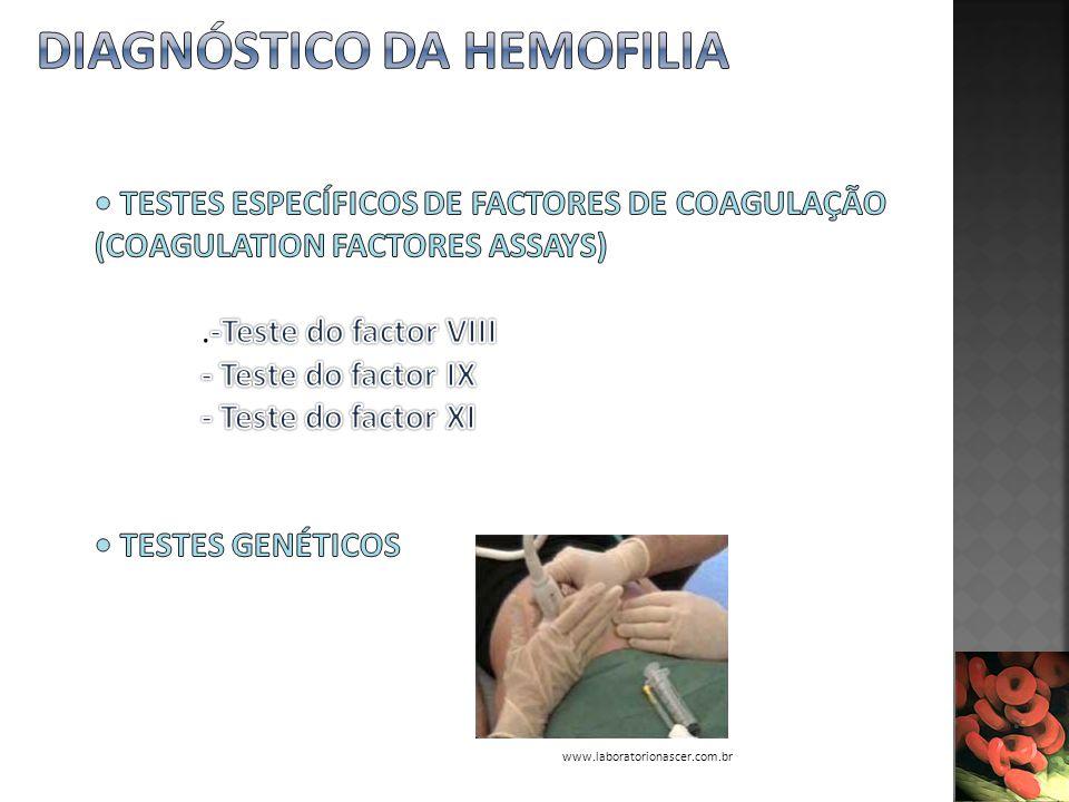 www.laboratorionascer.com.br