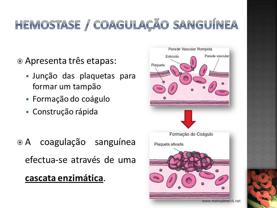 Apresenta três etapas: Junção das plaquetas para formar um tampão Formação do coágulo Construção rápida A coagulação sanguínea efectua-se através de u