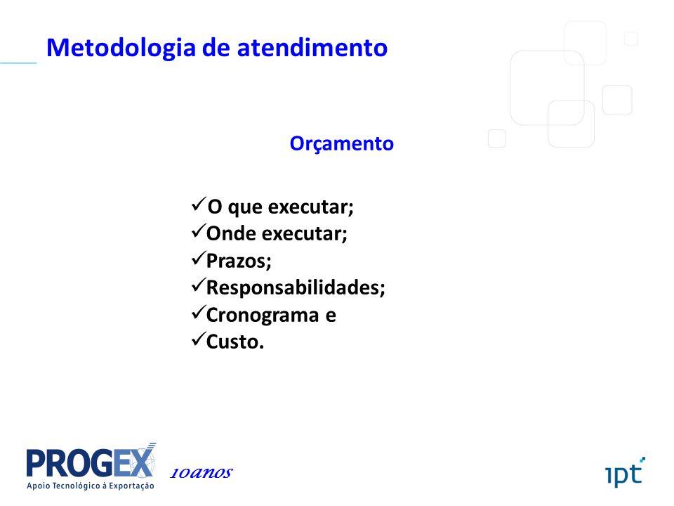Metodologia de atendimento Orçamento O que executar; Onde executar; Prazos; Responsabilidades; Cronograma e Custo. 10anos