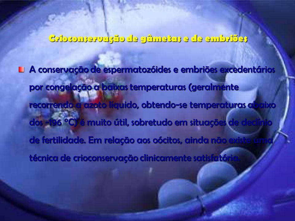 Crioconservação de gâmetas e de embriões A conservação de espermatozóides e embriões excedentários por congelação a baixas temperaturas (geralmente re