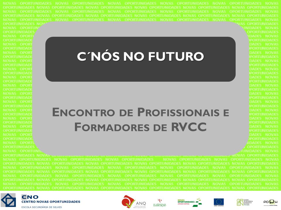 Sugestões de temas para o próximo encontro Formação Complementar Progressão na carreira Metodologias de inovação no processo de RVCC Ofertas formativas alternativas ao processo de RVCC Balanço de Competências – Estrutura dos processos de RVCC em cada CNO do Algarve Ligação à comunidade / Parcerias Trabalho de/em equipa Simplificar a área de competência- chave STC Estrutura/organização dos Portefólios Qualificações profissionais das equipas O papel do CNO depois do 12º ano Validação das línguas estrangeiras em CLC Intervenção Comunitária no CNO.