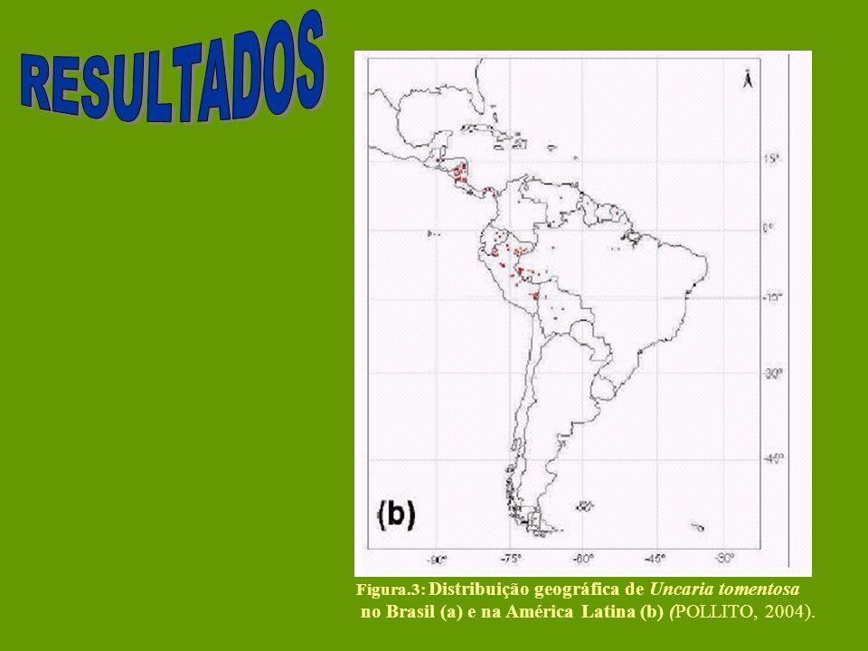 Figura.3: Distribuição geográfica de Uncaria tomentosa no Brasil (a) e na América Latina (b) (POLLITO, 2004).