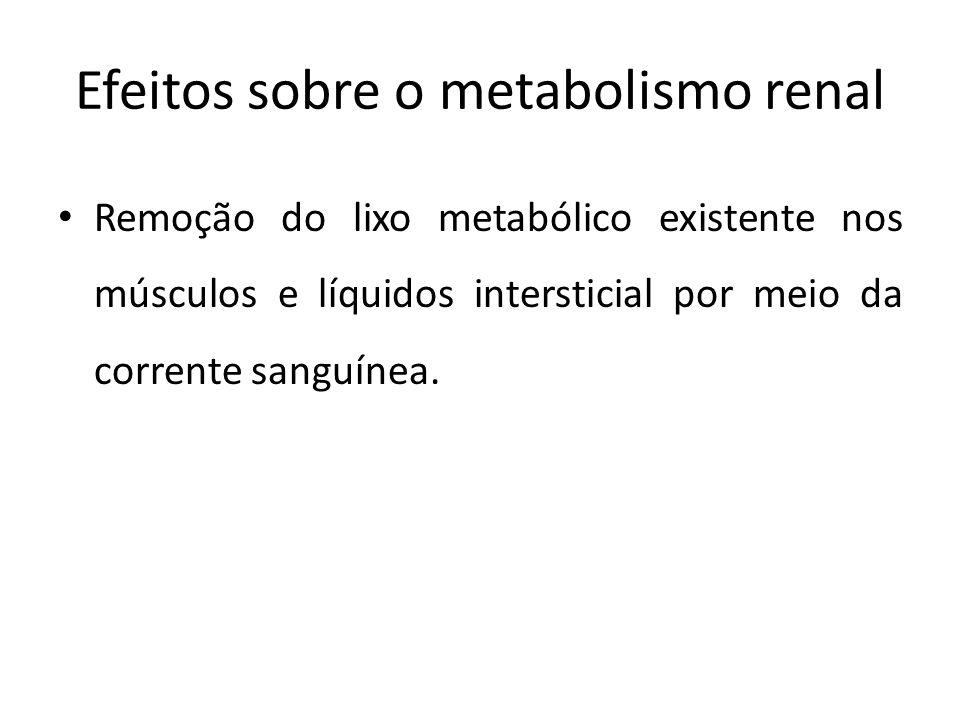 Efeitos sobre o metabolismo renal Remoção do lixo metabólico existente nos músculos e líquidos intersticial por meio da corrente sanguínea.