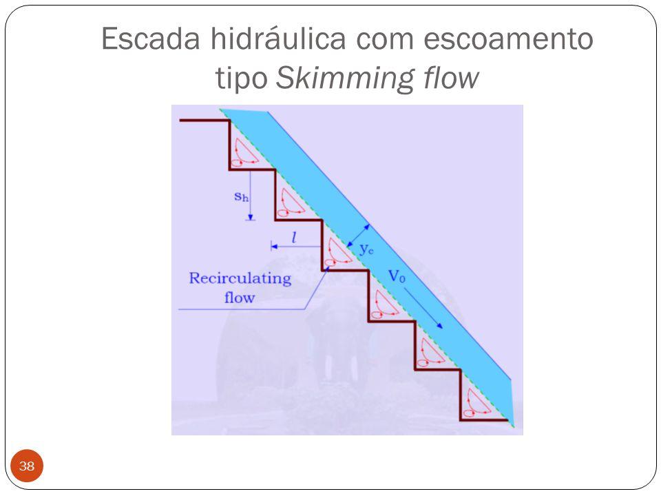 Escada hidráulica com escoamento tipo Skimming flow 38