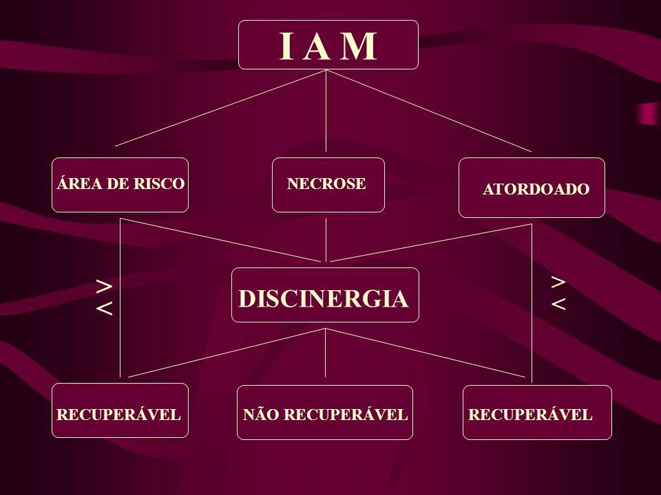 I A M ÁREA DE RISCO ATORDOADO NECROSE DISCINERGIA NÃO RECUPERÁVELRECUPERÁVEL > < > <