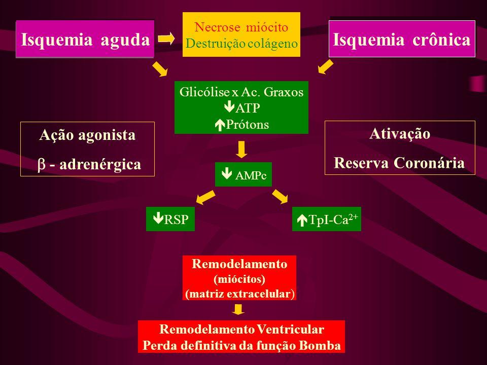 Isquemia crônica Isquemia aguda TpI-Ca 2+ RSP AMPc Glicólise x Ac.