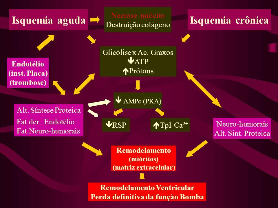Neuro-humorais Alt.Sint. Proteica Isquemia crônicaIsquemia aguda Fat.der.