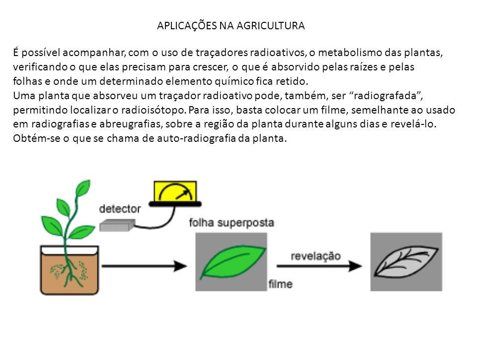 APLICAÇÕES NA AGRICULTURA É possível acompanhar, com o uso de traçadores radioativos, o metabolismo das plantas, verificando o que elas precisam para
